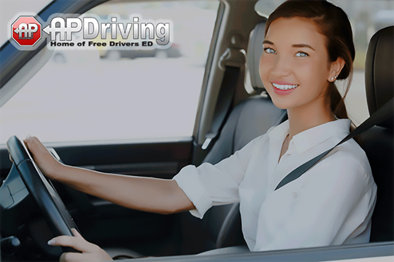 Student Driver Girl Holding Steering Wheel